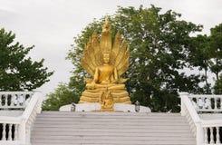 Buddhastaty med hövdad orm nio Royaltyfri Foto