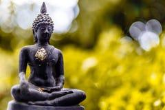 Buddhastaty med naturen Royaltyfria Foton