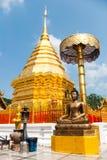Buddhastaty och guld- pagod Royaltyfri Foto