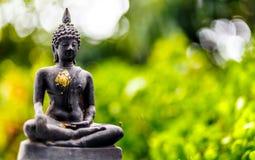 Buddhastaty på bokehgräsplan Fotografering för Bildbyråer