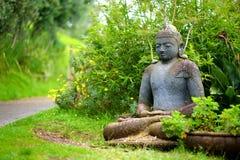 Buddhastaty på den Alii Kula lavendellantgården på Maui, Hawaii royaltyfria bilder