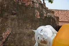 Buddhastaty på forntida slottar ayutthaya thailand Arkivfoton