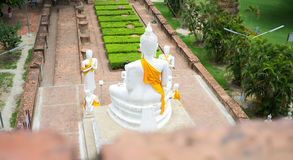 Buddhastaty på templet, Ayutthaya, Thailand Arkivbilder