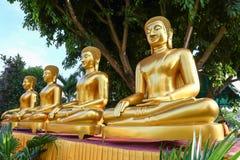 Buddhastaty på Ubon, Thailand Arkivfoton