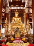 Buddhastaty på Wat Lok Molee, Chiang Mai, Thailand royaltyfria bilder
