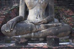 Buddhastaty på Wat Maha That, Sukhothai Arkivfoton