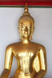 Buddhastaty på Wat Phra Chetuphon Arkivfoto