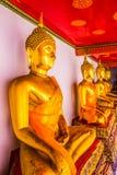 Buddhastaty på watphoen Royaltyfri Bild