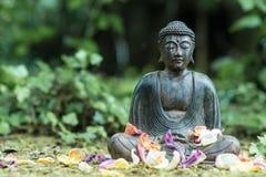 Buddhastaty utomhus Royaltyfri Fotografi