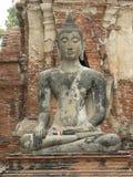 BUDDHASTATY, WAT MAHA SOM TEMPEL, AYUTTHAYA, THAILAND Royaltyfri Fotografi