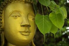 Buddhastatycloseup Fotografering för Bildbyråer