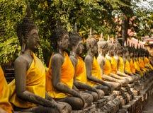 Buddhastatyer Royaltyfria Bilder