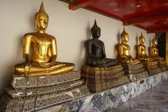 Buddhastatyer Royaltyfri Foto