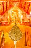 Buddhastatyer, Ayutthaya, Thailand. Arkivfoto