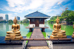 Buddhastatyer framme av den Seema Malaka templet i Colombo Arkivbild