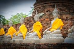 Buddhastatyer i Ayutthaya Royaltyfri Foto