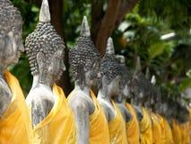 Buddhastatyer i Ayutthaya, Thailand Arkivbilder