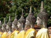 Buddhastatyer i Ayutthaya, Thailand Arkivfoto