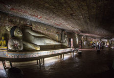 Buddhastatyer i den Dambulla grottatemplet, Sri Lanka Royaltyfria Foton