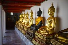 Buddhastatyer i rad på Wat Pho Arkivfoton