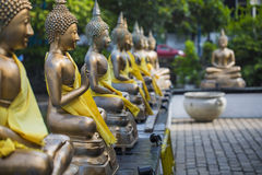 Buddhastatyer i Seema Malaka Temple, Colombo, Sri Lanka Royaltyfri Fotografi
