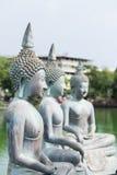 Buddhastatyer i Seema Malaka Temple i Colombo, Sri Lanka Fotografering för Bildbyråer