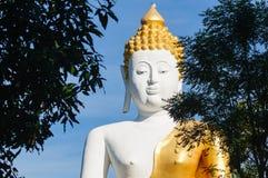 Buddhastatyer på Wat Doi Kham fotografering för bildbyråer