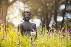 Buddhastatyett i naturen Arkivbilder