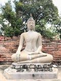 Buddhastatyn på den forntida staden historiska Ayutthaya parkerar royaltyfria foton