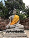 Buddhastatyn på den forntida staden historiska Ayutthaya parkerar royaltyfri fotografi