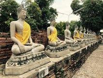 Buddhastatyn på den forntida staden historiska Ayutthaya parkerar fotografering för bildbyråer