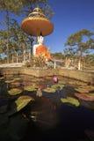 Buddhastatyreflexioner i ett lotusblommadamm i skogen, Phukradung nationalpark Royaltyfri Fotografi