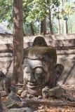 Buddhastatys huvud på Wat Umong Arkivfoto