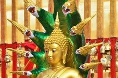 Buddhastatytempel Royaltyfri Fotografi