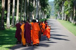 Buddhism children monks in a park Royalty Free Stock Photography