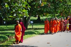 Buddhism children monks in a park Royalty Free Stock Images