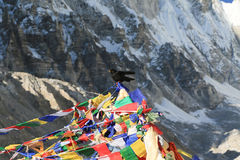 Buddhism flag everest basecamp  from nepal Stock Photos