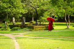 Buddhism monk in red clothes follows the path Stock Photography