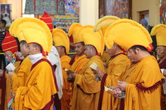 Buddhism Monks at a Praying Ceremony in Dharamsala Royalty Free Stock Photography