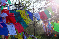 Buddhism prayer flags lungta with om mani padme hum mantra Royalty Free Stock Photo