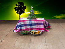 Buddhism. Is revered by Buddhists. And what is sacred Royalty Free Stock Images