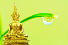 Buddhism statue ,field on grass tree and sun in morning Stock Photography