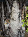Buddhism statue in the tree roots Stock Photo