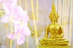 Buddhismusstatue, Feld des grünen Baums und Sonne am Morgen Stockfotos