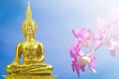 Buddhismusstatue, Feld des grünen Baums und Sonne am Morgen Stockfoto
