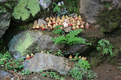 Buddhist amulets were put on a rock in a forest near Paro (Bhutan) Stock Photo