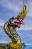 Buddhist art. Dragon head,gold,black and yellow stripes stock photos