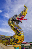 Buddhist art. Dragon head,gold,black and yellow stripes stock photo