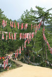 Buddhist banners were hung on trees in the countryside near Paro (Bhutan) Stock Photos