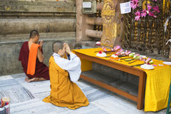 Buddhist monk and nun at the Mahabodhi Temple. A Buddhist nun and monk perform puja at the Mahabodhi temple, Bodhgaya, India Royalty Free Stock Image